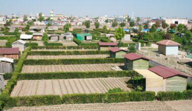 Hobi Bahçelerine Bir Yasakta Büyükşehir'den