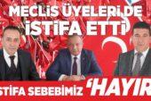 MHP'li Belediye Meclis Üyeleri de İstifa Etti