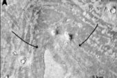 Mars'ta tsunami izleri