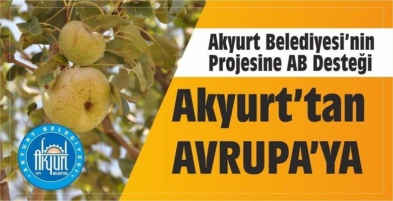 Ankara Armudu'na AB Desteği