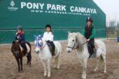 Tatilde Çankaya Parkları Ankaralıları Bekliyor