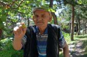 Yaşlılar İçin Hobi Bahçesi Oluşturuldu