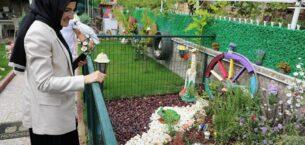İşte Akyurt'un En Güzel Bahçeleri