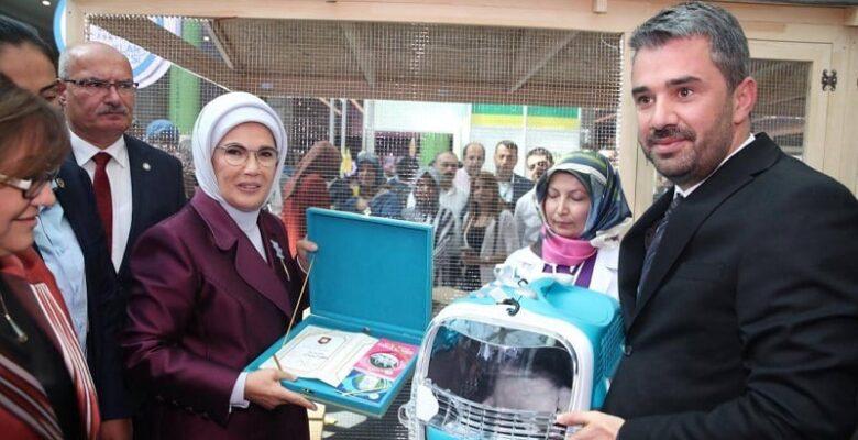 Başkan Çetin'den Erdoğan'a Ankara Kedisi