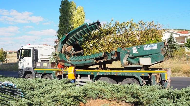 248 Ağaç İle 8 Bin 500 Bitki Taşındı