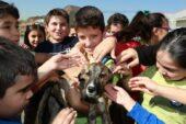 Hayvan Bakımevinin Kapıları Çocuklara Açıldı