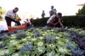 Yenimahalle'de Kış Mevsimi Renkli Geçecek