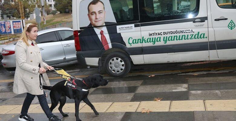 Çankaya'dan Rehber Köpek Farkındalığına Destek