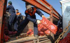 Büyükşehir'den Çiftçilere Çağrı