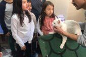 Minikler Kedi Sahiplendiler