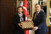 Çubuk'ta 60 bin TL ödüllü satranç turnuvası