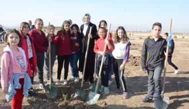 Akyurt Belediyesi'nden Örnek Proje: Her can için bir fidan