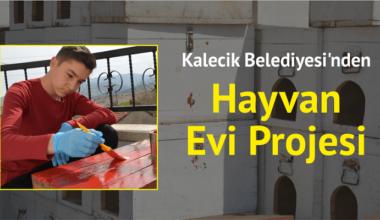 Kalecik Belediyesi'nden hayvan evi projesi