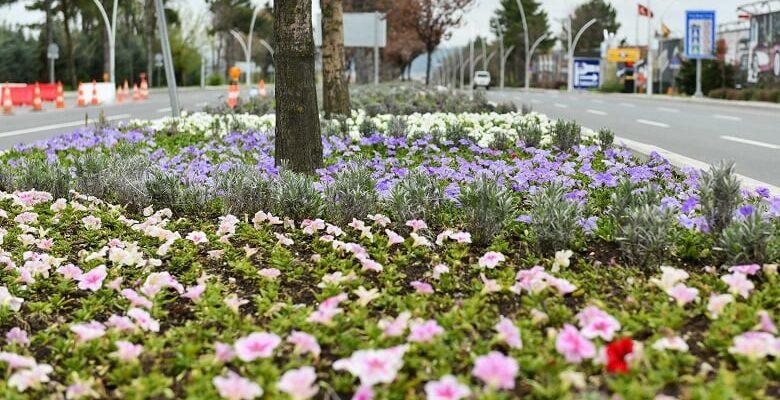 Ankara çiçeklerle süslenecek