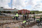 Gölbaşı Belediyesi 10 bin lavantayı toprakla buluşturdu