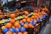 Başkentte portakal satışı rekor kırdı