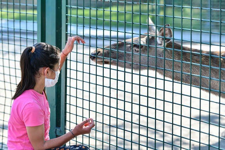 Sincan Hayvanat Bahçesi Ziyaretçilerini Bekliyor