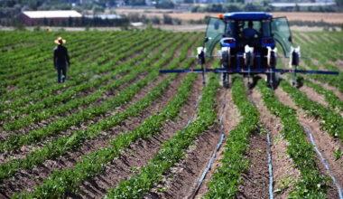 Büyükşehir'e ait tarım arazilerinde geri sayım başladı