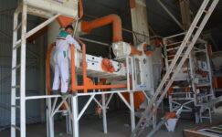 Akyurt tohum eleme tesisi sezona hazır