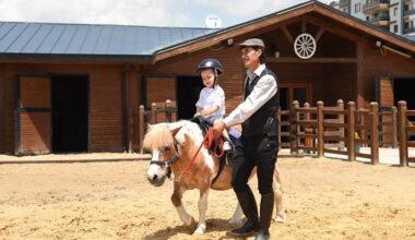 Altındağ, Altınköy'e at çiftliği