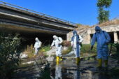 Ankara Çayı'nda biyolojik temizlik