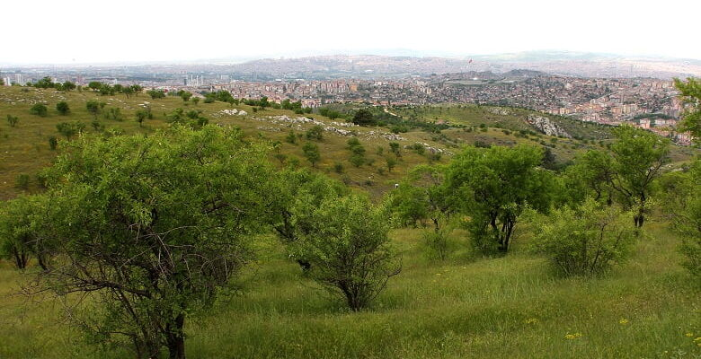 Bademlidere Projesi Mayıs Ayında Başlıyor