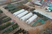 Mamak'ın bitki üretim merkezi