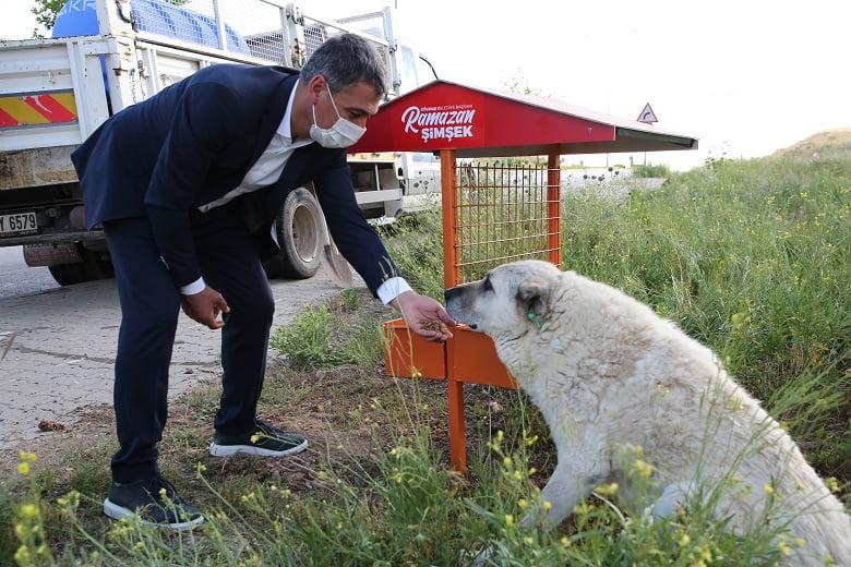 Başkan Şimşek: Sokak hayvanlarımıza dokunanlar karşılarında bizi bulacak