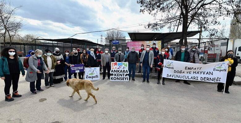 Başkent'li Hayvanseverler Can Dostlar İçin Bir Araya Geldi