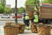 Büyükşehir Belediyesi Başkenti bahara hazırlıyor