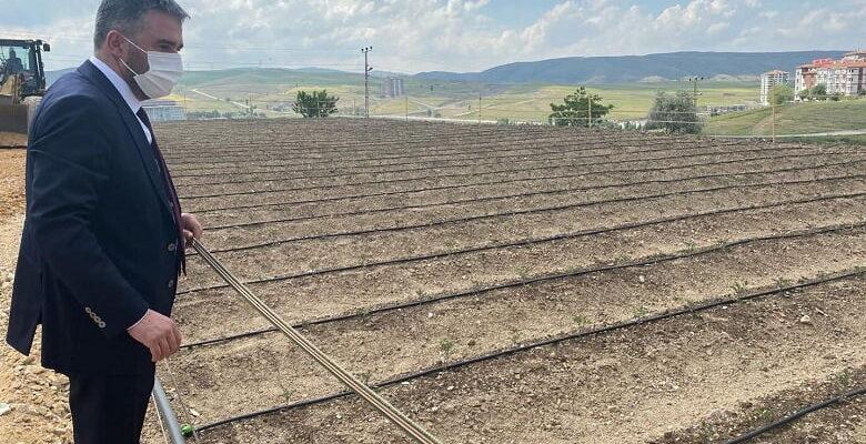 Pursaklar'da Ata Tohumları Toprakla Buluştu