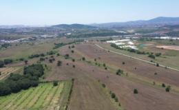 Boş duran arazilerde ilk hasat yapıldı