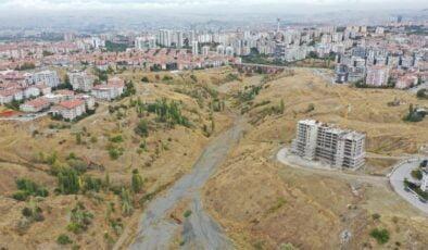 Yeşilin başkenti kampanyası ile başkent daha yeşil olacak