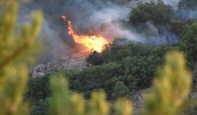 Kızılcahamam'daki yangın kontrol altına alındı