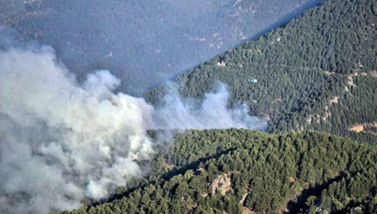 Orman yangınlarına müdahale sürüyor