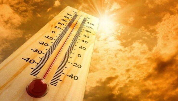 Rekor sıcaklık: 50 dereceye yaklaştı!