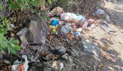 Sakarya Sapanca Gölü'nden torbalarca atık toplandı