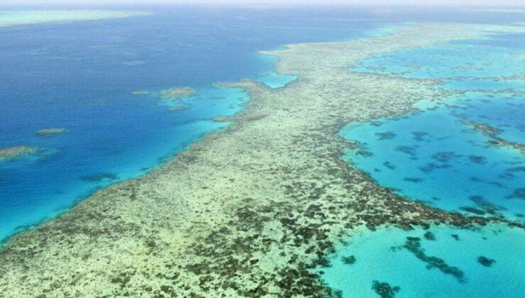 UNESCO, Büyük Bariyer Resifi'ni 'kırmızı liste'ye alacak