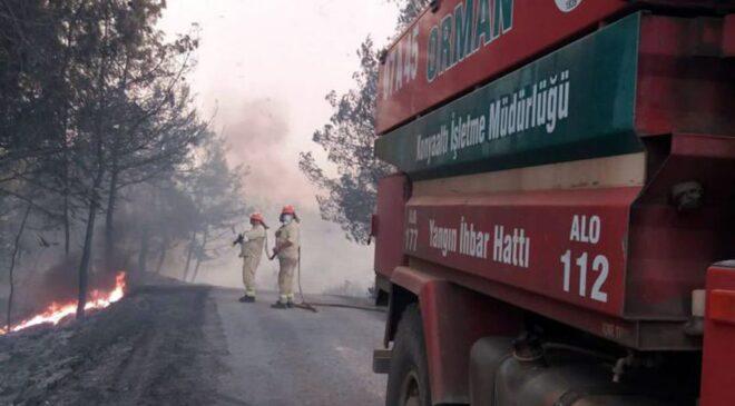 6 günde 130 orman yangını kontrol altında