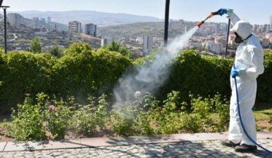 Başkent'te vektörle mücadele devam ediyor