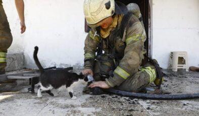 İBB ekiplerinin yangın mesaisi