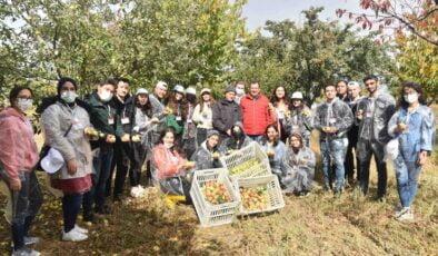 Çubuk'ta bir hayırsever hasadı öğrencilere bağışladı